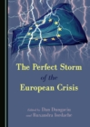 The Perfect Storm of the European Crisis - eBook