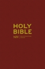 NIV Popular Burgundy Hardback Bible - Book