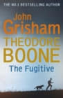 Theodore Boone: The Fugitive : Theodore Boone 5 - eBook