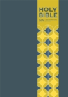 NIV Pocket Blue Soft-tone Bible with Clasp - Book