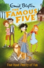 Five Have Plenty Of Fun : Book 14 - eBook