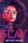 SLAY : the Black Panther-inspired novel about virtual reality, safe spaces and celebrating your identity - Book