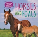 Animals and their Babies: Horses & foals - Book