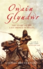 Owain Glyndwr : The Story of the Last Prince of Wales - eBook