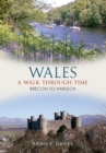 Wales A Walk Through Time - Brecon to Harlech - eBook