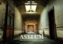 Asylum : Inside the Pauper Lunatic Asylums - eBook