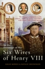 In the Footsteps of the Six Wives of Henry VIII : The visitor's companion to the palaces, castles & houses associated with Henry VIII's iconic queens - Book