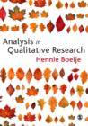 Analysis in Qualitative Research - eBook