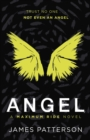 Angel: A Maximum Ride Novel : (Maximum Ride 7) - eBook