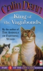 King Of The Vagabonds - eBook