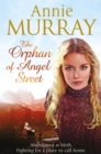 The Orphan of Angel Street - Book