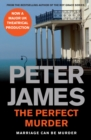 The Perfect Murder - Book