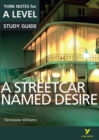 A Streetcar Named Desire: York Notes for A-level - Book