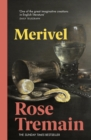 Merivel : A Man of His Time - eBook