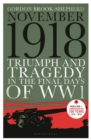 November 1918 : Triumph and Tragedy in the Final Days of WW1 - Book