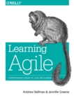 Learning Agile : Understanding Scrum, Xp, Lean, and Kanban - Book