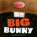 Big Bunny - eBook