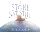 A Stone Sat Still - eBook