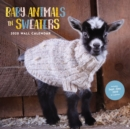 Baby Animals in Sweaters 2020 Wall Calendar - Book