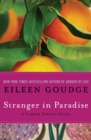 Stranger in Paradise - eBook