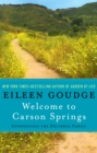 Welcome to Carson Springs : Introducing the Delarosa Family - eBook