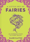 A Little Bit of Fairies : An Introduction to Fairy Magic - Book