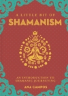 Little Bit of Shamanism, A : An Introduction to Shamanic Journeying - Book