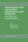 Polyphenylene Oxide and Modified Polyphenylene Oxide Membranes : Gas, Vapor and Liquid Separation - eBook