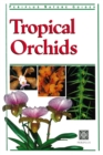 Tropical Orchids of Southeast Asia - eBook