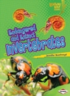 Endangered and Extinct Invertebrates - Book