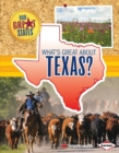 What's Great about Texas? - eBook