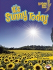 It's Sunny Today - eBook