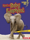 Meet a Baby Elephant - eBook