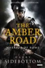 The Amber Road : Warrior of Rome: Book 6 - eBook