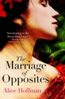 The Marriage of Opposites - Book