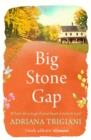 Big Stone Gap - eBook