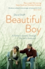 Beautiful Boy : A Father's Journey Through His Son's  Addiction - Book
