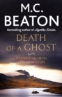 Death of a Ghost - eBook
