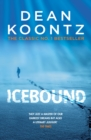 Icebound : A chilling thriller of a race against time - eBook