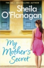 My Mother's Secret : A warm family drama full of humour and heartache - Book