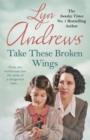 Take these Broken Wings : Can she escape her tragic past? - Book