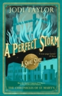 A Perfect Storm - eBook