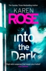 Into the Dark (The Cincinnati Series Book 5) - Book