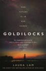 Goldilocks : The boldest high-concept thriller of 2020