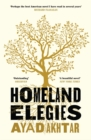 Homeland Elegies : 'Passionate, disturbing, unputdownable' Salman Rushdie - eBook