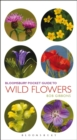 Pocket Guide To Wild Flowers - eBook