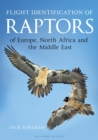 Flight Identification of Raptors of Europe, North Africa and the Middle East - eBook