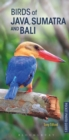 Birds of Java, Sumatra and Bali - Book