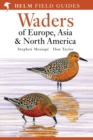 Waders of Europe, Asia and North America - eBook