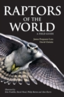 Raptors of the World: A Field Guide - eBook